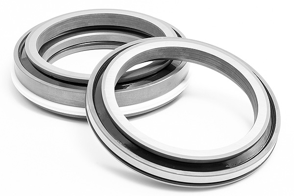 Customized Mechanical Face Seals