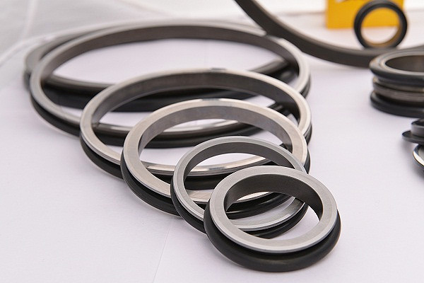 SAP Parts highly technology used Duo Cone Seals